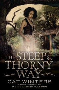 TheSteepandThornyWay